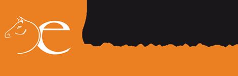 E-comouest client MEli Business